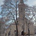 ФОТО читателя Delfi: И в Ида-Вирумаа пришла зима