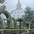 Vatikani aednikud on oma ala tõelised meistrid. Foto: Toivo Tomingas