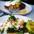 8 причин успеть посетить Таллиннскую неделю ресторанов