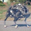 WildCat. Boston Dynamics