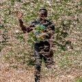 HIRMUS NUHTLUS: Keenia talunik peletab eemale tirtsuparve.