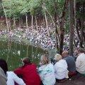 Publikut täis Kaali järve kaldad