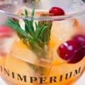 Need, kellele džinn alkoholina või kokteiliosana eriti ei meeldi – näiteks hiniinist tuleva mõru meki pärast – jätab sloe gin vabandustest ilma.