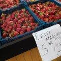 FOTOD | Eesti maasikas uputab turgusid. Vaata, mis hinnaga kodumaise marja kätte saab!