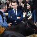 Emmanuel Macron põllumajandusmessil