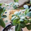 Экономический прогноз: локомотивом роста экономики Эстонии в нынешнем году станет потребление