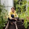 Anzelika Gomozova kasvatab köögivilja nii endale kui ka müügiks.