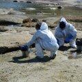 DELFI FOTOD: Päästeamet koristab Tabasalu ja Suurupi vahelisele rannikule kogunenud reostuse
