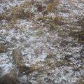 Esimene lumi Soomaal