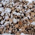 Küttepuidu hind oli Heiki Hepneri koostatava puiduturu ülevaate järgi praegusest madalam 2017. aasta augustis.