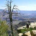 VÕIMAS: Suure Kanjoni kõrval tasub külastada ka Kuningakanjonit, mis arvatavasti on üks maalilisemaid paiku kogu Ühendriikides. Kõrguste vahe ulatub 2400 meetrini.