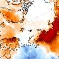 На полюсе холода в Арктике аномальная жара: воздух прогрелся почти до 40 градусов