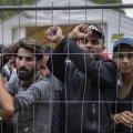 Landsbergis hoiatas migrante, et nad riskivad diktaatori kätte sattudes surmaga