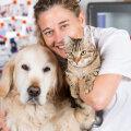 Teaduslikult tõestatud! Kes armastavad inimesi rohkem, koerad või kassid?