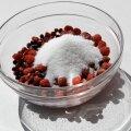 Suhkrust ja jahust ja maasikavahust...
