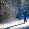Põhja-Eestis Järve terviserajal on suusarõõmu nautimiseks lund piisavalt, kuid Otepää kandile pole taevataat esialgu veel halastanud.