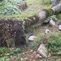Tormikahjud Tori kalmistul