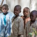 Põgenike lapsed põllumajandusüksuses