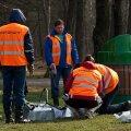 Tallinn ja riik põrgatavad Stroomi metsa kordategemise kohustust