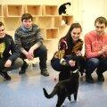 Молодежь Ласнамяэ собрала продукты для животных из приюта