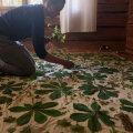 Võlukunst taimemustrite ja -värvidega | Jutuajamine taimetrüki haldja Janika Solmanniga
