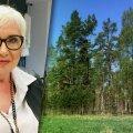 Tammeotsa metsakinnistu omanik Vivian Vulf