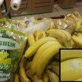 FOTO: Kas selle Pärnu poes müügil olnud banaani küljes on mürgise ämbliku kookon?