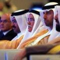 Araabia 10. Energiakonverents Abu Dhabis