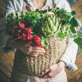 KASULIKUD NIPID | Nii tunned ära värsked köögiviljad