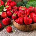 Kuidas kasvatada pirakad ja mahlased maasikad ning milliseid vigu tuleb kindlasti vältida?