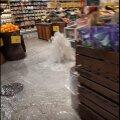 """VIDEO   Tartu Rimisse kerkinud """"purskkaev"""" sundis toidupoe mitmeks tunniks sulgema"""