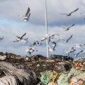 Biojäätmete komposteerimine Aardlapalu prügilas