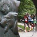 ФОТО: Таллиннскому марафону даже дождь не помеха