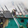 ФОТО | На Сааремаа при пожаре жилого дома погибли домашние животные