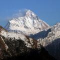 Lootus kaheksa Himaalajas kadunud mägironija leidmiseks on kadumas