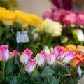 Lillede viimine on küll kena tava, aga Eesti on üks suurema palgalõhega riike Euroopa Liidus.