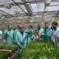 Eesti viljakasvatajatel on Inglismaalt palju õppida ning sinna on nende õppereise tehtud mitu korda. Pildil on grupp Eesti parimaid viljakasvatajaid Syngenta laboris Londonis.
