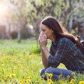 Igapäevased toiduained, mis allergiad kordades hullemaks muudavad