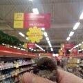 Kaubanduskeskused on hädas siseruumidesse sattunud lindudega