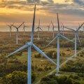 Otsus tehtud: Eesti Energia tütarettevõte Enefit Green läheb Tallinna börsile