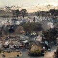 Maastikupõlengud Tasmaanias: 1000 inimest on põgenenud ja üle 100 maja hävinud