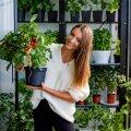 Uudisteankur Ingrid Teesalu tutvustab oma kortermaja rõdule tekitatud kasvuhoonet: olin nagu väike laps!
