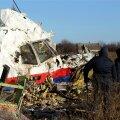 Eksperdid: pole kahtlust, et Malaysia Airlinesi lennuk lasti Ukraina kohal alla raketiga maapinnalt, mitte teiselt lennukilt