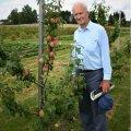 Legendaarne aiandusteadlane Kalju Kask jättis endast maha mitmeid puuviljasorte