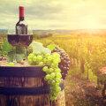 Kas Eestis kasvatatud viinamarjad ja nendest tehtud vein suudavad antioksüdantide sisalduselt lõunamaistega konkureerida?