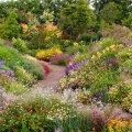 VAATA OTSE   Videoseminar annab ideid, kuidas kujundada oma aeda