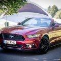 Legend laulab taas. Ford Mustangi vabalt hingav mootor pakub V8 helistikus mõnusat vana kooli naudingut. Muskelauto podin ja võdin paneb kõik ihukarvad mootori taktis vibreerima.