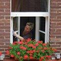 ПОДРОБНАЯ ИНСТРУКЦИЯ | Как помыть окна в два раза быстрее и без разводов