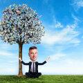 Kits kärneriks: kuidas raielubasid väljastav riigiametnik oma puutumatud metsad rahaks tegi