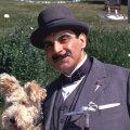 Hercule Poirot kasutab oma halle ajurakke 33 Christie romaanis, ühes näidendis ja rohkem kui 50 lühijutus.